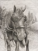 Agriculture Drawings Framed Prints - Beast of Bourbon Framed Print by Rick Moore