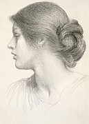 Female Face Drawings - Beatrice Stuart by Sir Frank Dicksee