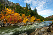 Red River Photo Framed Prints - Beautiful Autumn Framed Print by Dan Mihai