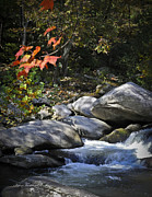 Terry Kirkland Cook - Beautiful Autumn Stream