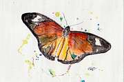 Natural World Paintings - Beautiful Beautiful Butterflies No 2 by Peter Stevenson