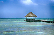Hallmark Photos - Beautiful Belize by Kristina Deane