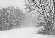 Snowstorm Art - Beautiful Blizzard by Kristin Elmquist