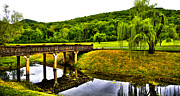 Bridge Of Flowers Prints - Beautiful Blowing Spring Park Print by David Patterson