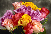 Bo Insogna Photos - Beautiful Bouquet Of Multicolor Roses by James Bo Insogna