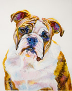 Janine Hoefler - Beautiful Bulldog