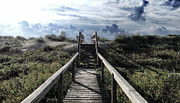 Beautiful Day At Cape Hatteras Print by Patricia Januszkiewicz