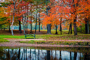 Picnic Table Framed Prints - Beautiful Fall Foliage in New Hampshire Framed Print by Edward Fielding