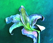 Ceramic Mixed Media - Beautiful Lilly Print by Dinni Kaur