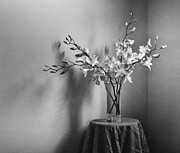Orchid Flowers Prints - Beautiful Melancholy Print by Amy Weiss