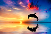 Silhouette Art - Beautiful ocean and sunset with dolphin jumping by Michal Bednarek