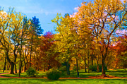 Sasa Prudkov - Beautiful park in autumn