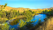 Payette River. Posters - Beautiful Payette Poster by Robert Bales