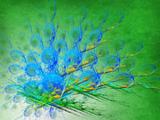 Wing Mixed Media Posters - Beautiful Peacock Abstract 1 Poster by Andee Photography
