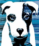 Puppies Digital Art Posters - Beautiful Pit Poster by Cindy Edwards
