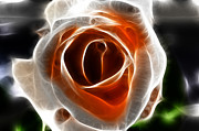 Valentines Day Digital Art - Beautiful Rose by Sotiris Filippou