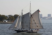 Beautiful Sailboat In Manhattan Harbor Print by John Telfer