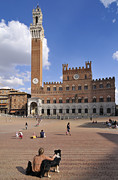 Watch Dog Photo Framed Prints - Beautiful Siena in Italy - Piazza del Campo Framed Print by Matthias Hauser