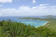 Saint Christopher Photos - Beautiful St Thomas by Willie Harper