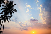 Tropical Sunset Framed Prints - Beautiful Tropical Sunset Framed Print by Nila Newsom