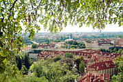 Red Roof Photos - Beautiful view of Prague by Ivy Ho
