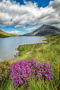 Llyn Prints - Beautiful Wales Print by Adrian Evans