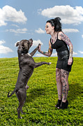 Women Together Posters - Beautiful Woman and Pit Bull Poster by Rob Byron