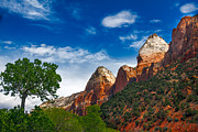 Beautiful Zion Print by Robert Bales