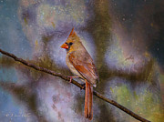 Layered Prints - Beauty And The Beak Print by J Larry Walker