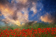 Poppy Fields Posters - Beauty And The Beast Of Nature Poster by Zeana Romanovna