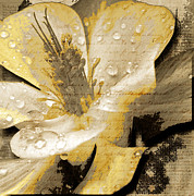 Fall Photos Mixed Media Prints - Beauty III Print by Yanni Theodorou