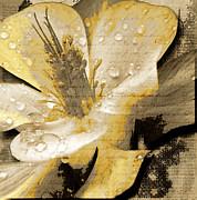 Beauty Iv Print by Yanni Theodorou