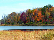 Ponds Photos - Beauty of Fall by Aimee L Maher