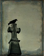 Crow Image Framed Prints - Beauty Of Gray Framed Print by Gothicolors And Crows