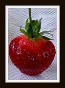 Gail Matthews - Beauty of the Berry