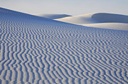 Slide Posters - Beauty of the White Sands Poster by Bob Christopher