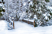 Gate Prints Prints - Beauty of Winter Print by Kathy Jennings