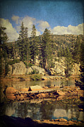 Pine Digital Art Framed Prints - Beauty You Find Along the Way Framed Print by Laurie Search
