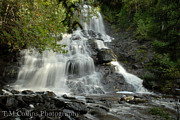 Tammy Collins Art - Beaver Brook Falls by Tammy Collins