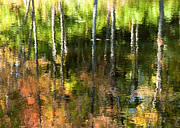 Gatineau Park Posters - Beaver Pond Reflections 1 Gatineau Park Quebec Poster by Rob Huntley