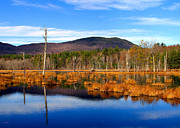 Sandwich Mountains Posters - Beaver Pond Poster by Shell Ette Photography