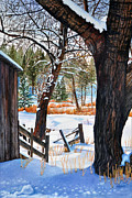 Barn Covered In Snow Framed Prints - Beckworth Bathed in Snow Framed Print by Sandi Howell
