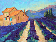 Diane McClary - Bedoin-Provence Lavender