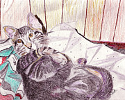 Animal Art Paintings - Bedtime Meows by Sarabjit Singh