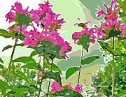 Bee Balm Print by Jean Hall