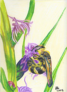 Bee Drawings - Bee on Flower by Jennifer  S
