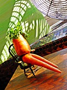 Carrot Photos - Beer Belly Carrot on a Hot Day by Sarah Loft