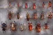 Winged Tapestries Textiles - Beetles - The usual suspects  by Mike Savad