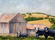 Steer Paintings - Behind the Barn by Terry Taylor