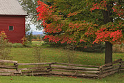 Split Rail Fence Posters - Behind the Old Wooden Fence Poster by Charles Kozierok